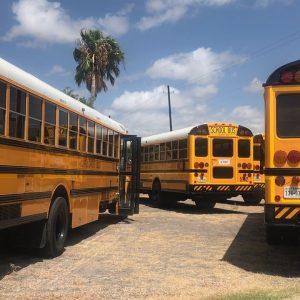 bus, school, school bus
